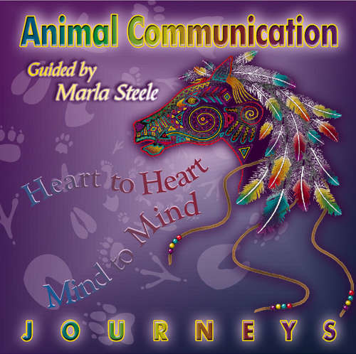 marla-steele-animal-communication-journeys-cd-front-cover-ns